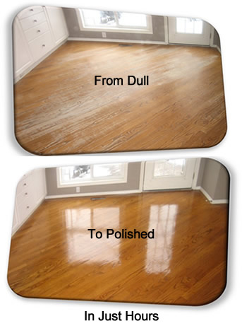 Dull to Polished Floors